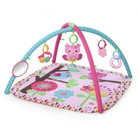 Pink Charming Chirps Activity Gym